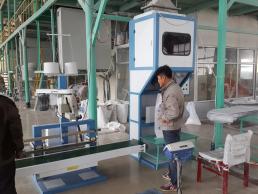 HG8000颗粒包装机